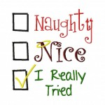 Naughty Nice I Really Tried Check Box Machine Embroidery Design