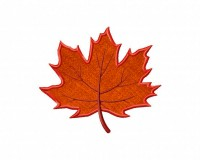 Autumn-Maple-Leaf-Applique-5x7