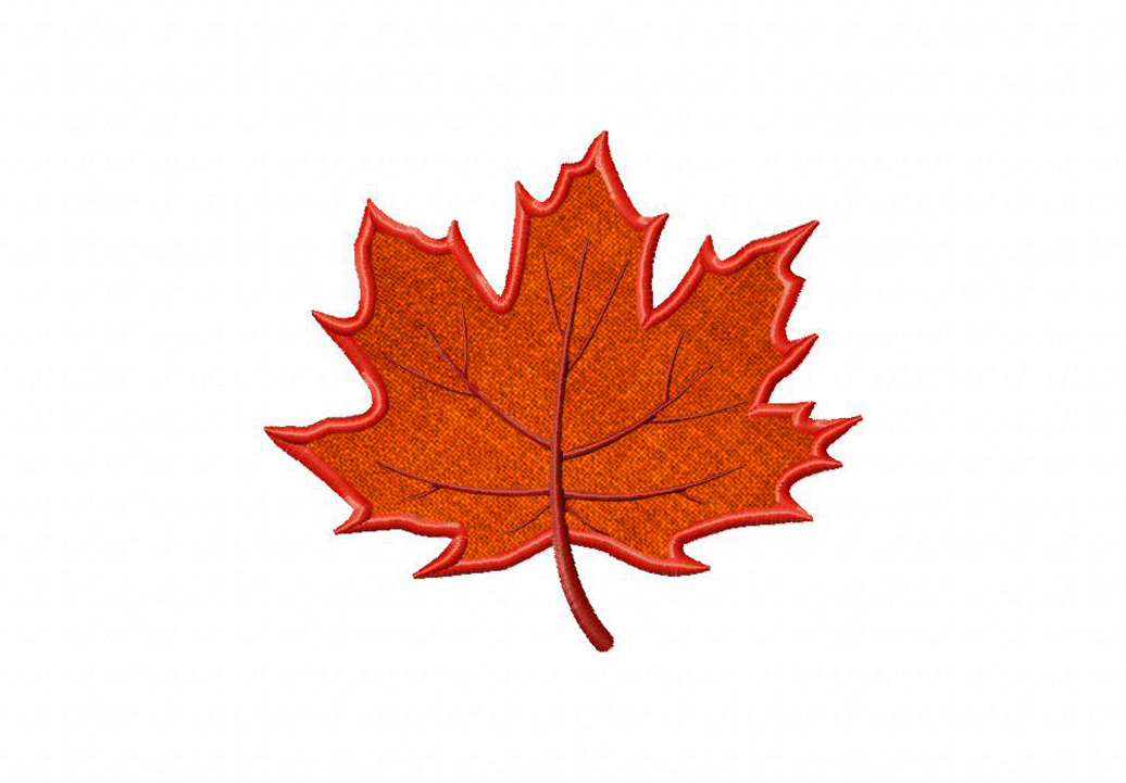 Pics Photos  Maple Leaf Embroidery Pattern
