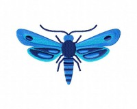 Blue-Moth-Stitched-5_5