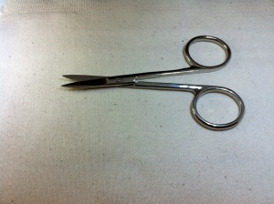 small appliqué scissors