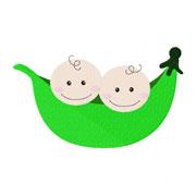 smallpeapodtwobabies
