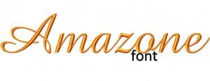 Amazone Example